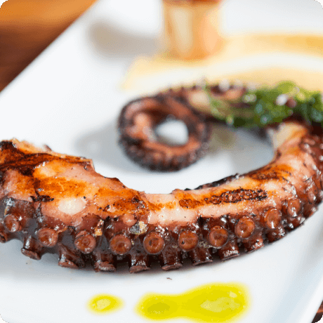 Grilled octopus by il Modo